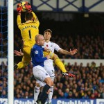 Everton v Swansea - November 2014