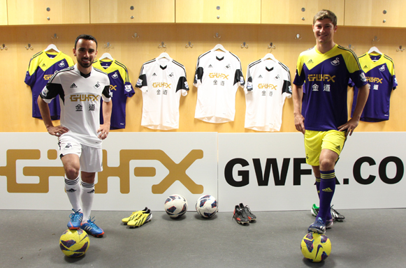 Swans sponsored by GWFX