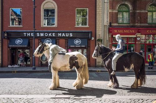 Penlan horses on Wind Street
